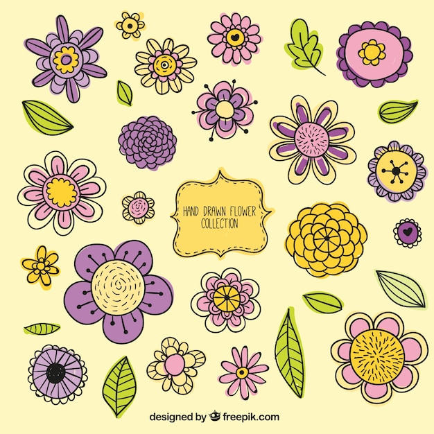 Variet di fiori disegnati a mano d 39 epoca insieme for Fiori disegnati
