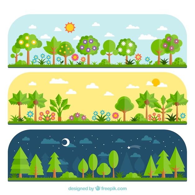 Varietà di foresta Vettore gratuito