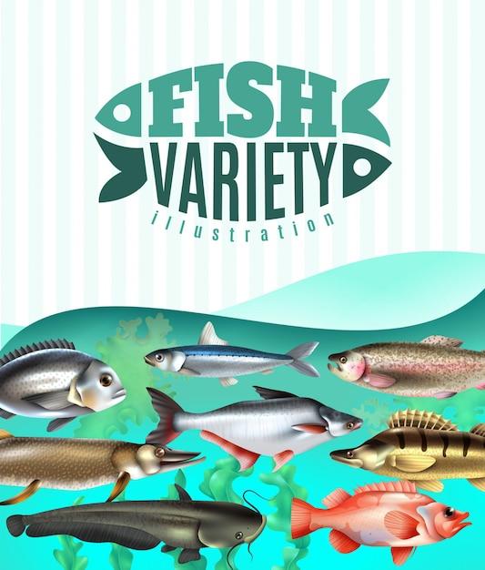 Varietà di pesci marini e fluviali sott'acqua con alghe su turchese Vettore gratuito