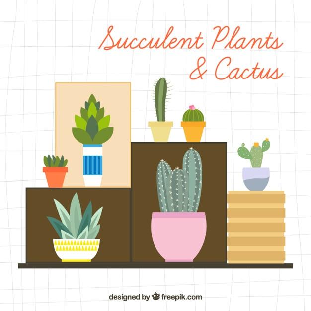 Variet di piante decorative e cactus in design piatto for Piante decorative