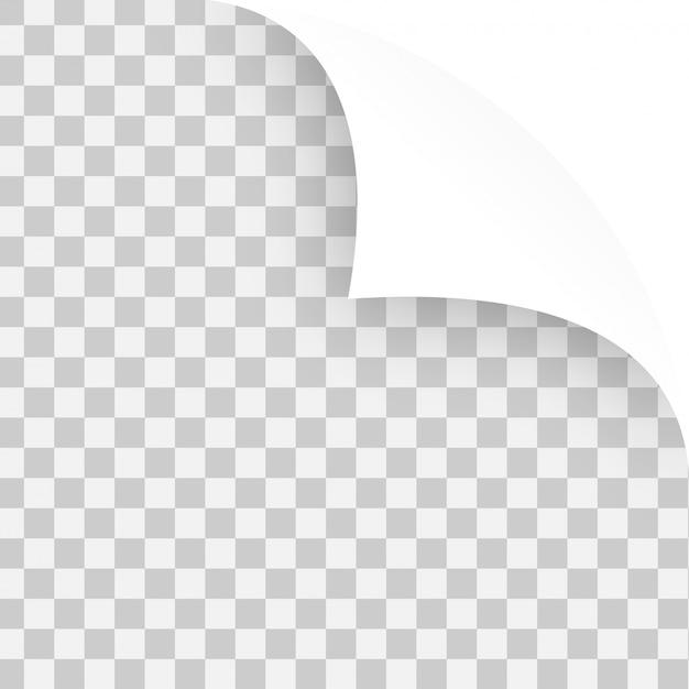 Vector angoli arricciati di carte di nota Vettore gratuito
