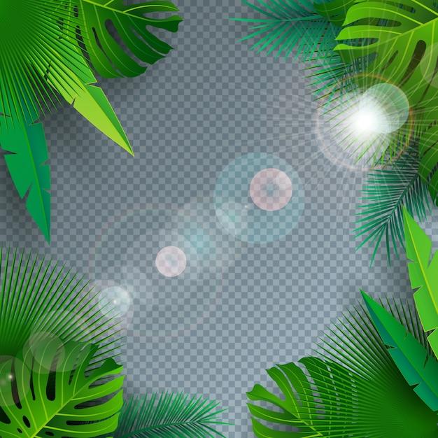 Vector l'illustrazione dell'estate con le foglie di palma tropicali su fondo trasparente Vettore Premium