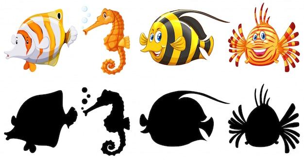 Versione silhouette, colore e contorno di pesce Vettore gratuito