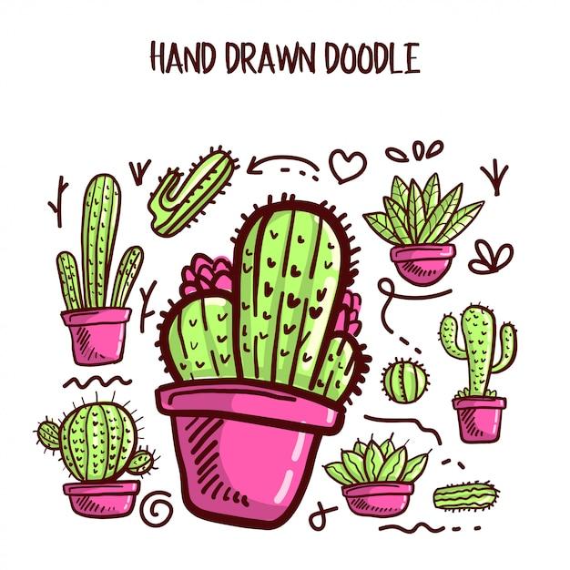 Vettore del set di cactus e succulente. Vettore Premium
