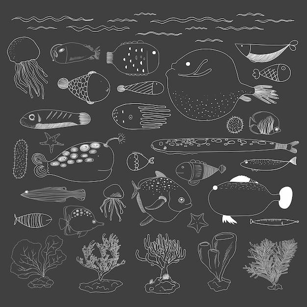 Vettore di creature sottomarine Vettore gratuito