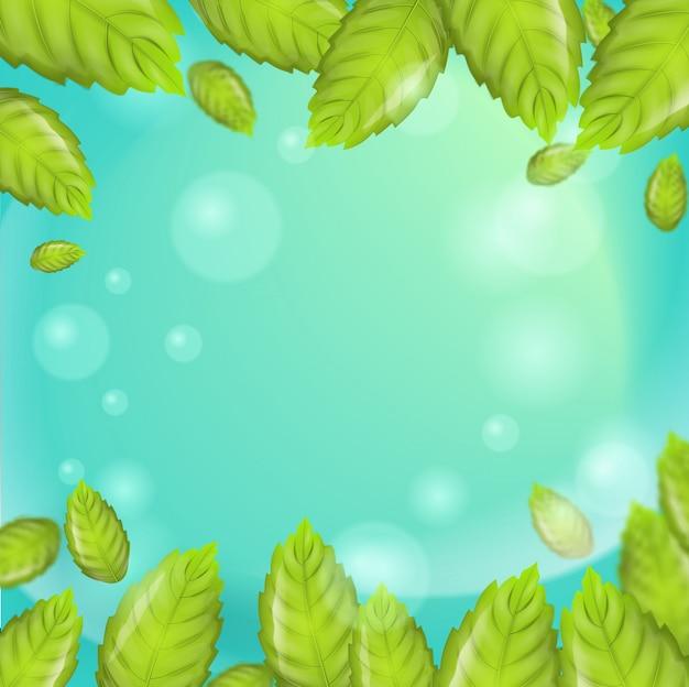 Vettore di foglie di menta fresca illustrazione realistica Vettore Premium