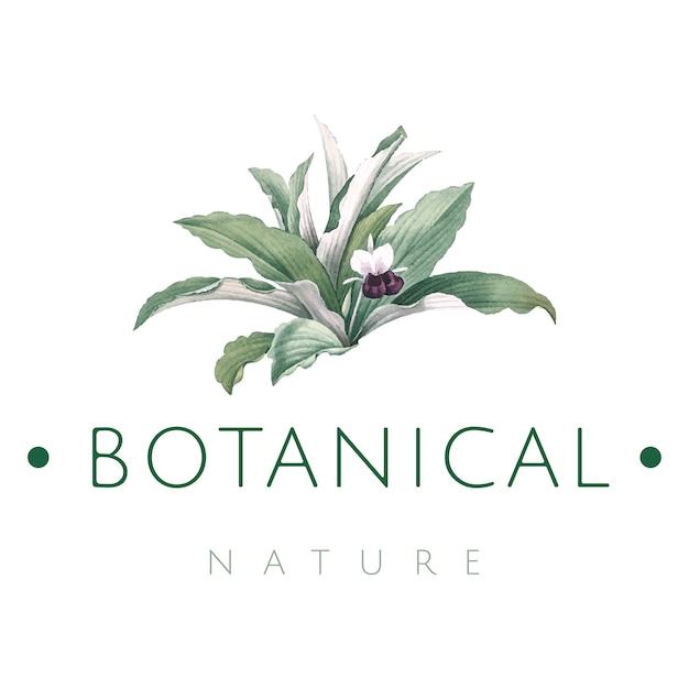 Vettore di progettazione di logo di natura botanica Vettore gratuito