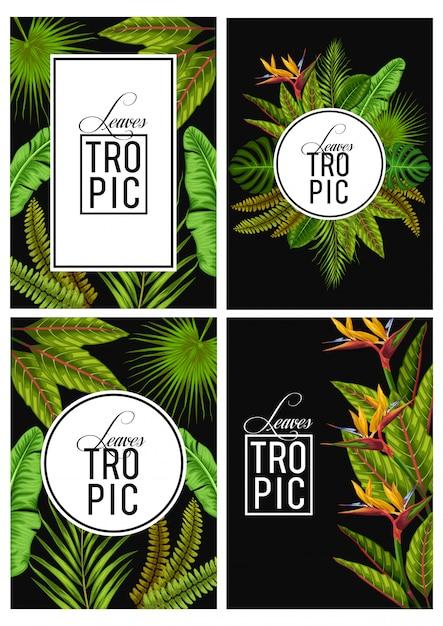 Vettore imposta carta di invito foglie tropicali esotici Vettore Premium