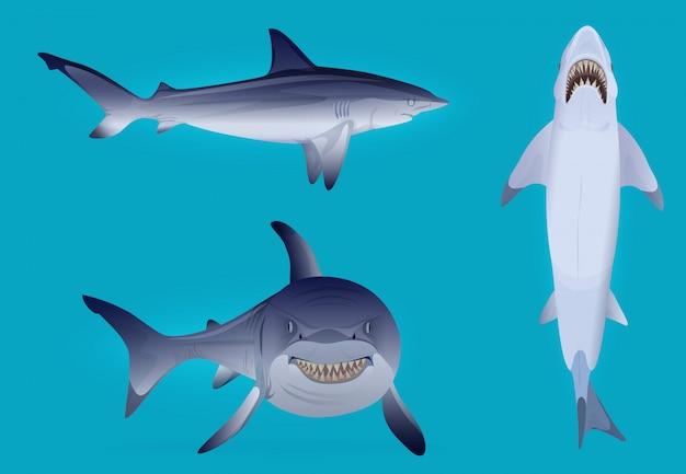 Vettore set di sagoma di pesce affamato e spaventoso squalo. Vettore Premium