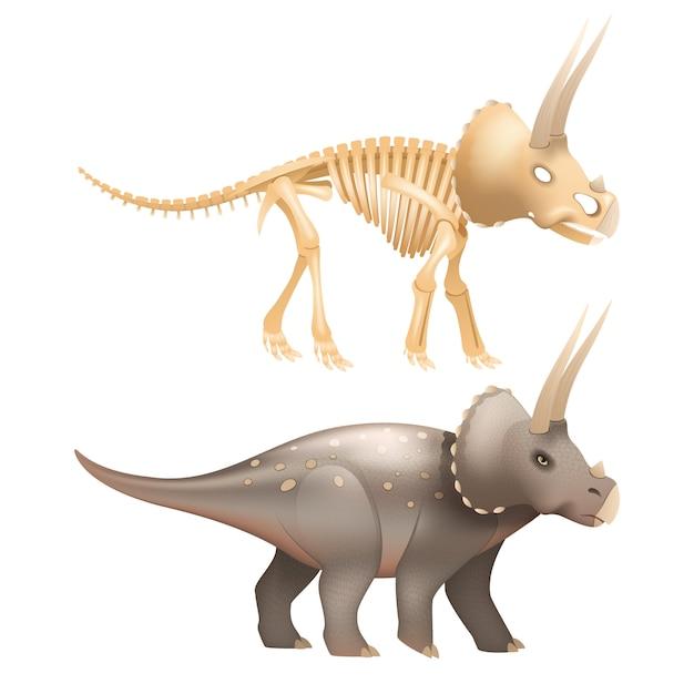 Vita triceratopo dinosauro con scheletro in epoca preistorica art Vettore gratuito