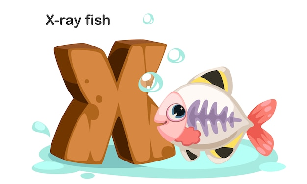 X per pesci raggi x. Vettore Premium