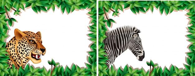 Zebra e leopardo sulla cornice della natura Vettore gratuito
