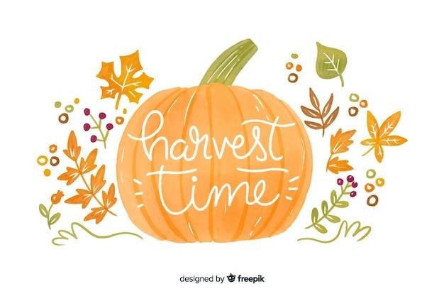 Zucca di autunno dell'acquerello e fondo delle foglie Vettore gratuito