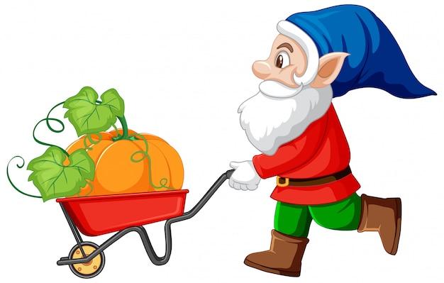 Zucca havest di gnome con il personaggio dei cartoni animati del carretto della carriola su fondo bianco Vettore gratuito