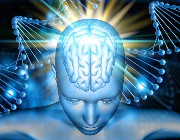 3d medische achtergrond met vrouwelijk cijfer met hersenen die op dna-bundels worden benadrukt Gratis Foto