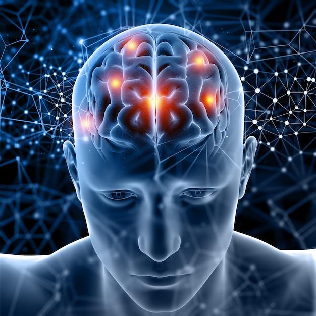 3d medische figuur met hersenen gemarkeerd Gratis Foto