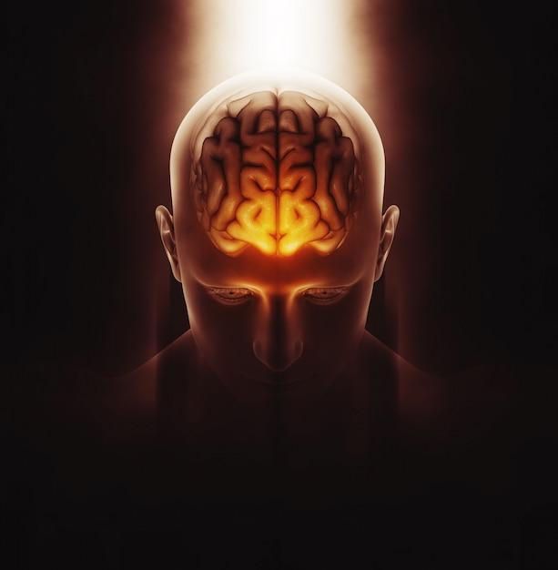 3d render van een medisch beeld van een mannelijke figuur met hersenen gemarkeerd en dramatisch gemarkeerd Gratis Foto