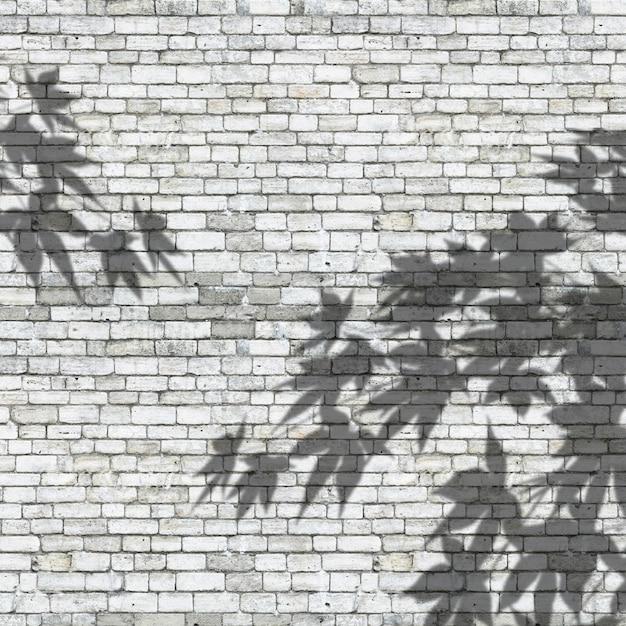3d verlaat schaduwen op een bakstenen muurtextuur Gratis Foto
