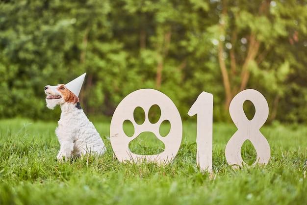Aanbiddelijke gelukkige fox-terrierhond bij begroin van het park 2018 nieuwe jaar Premium Foto