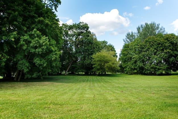 Aardachtergrond, park met weide Premium Foto
