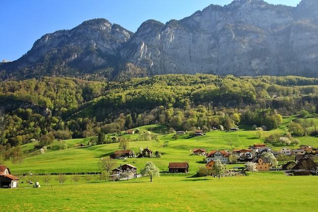 Aardlandschap van berg, bosopheldering en groen gebied boven een dorp in zwitserland. Premium Foto