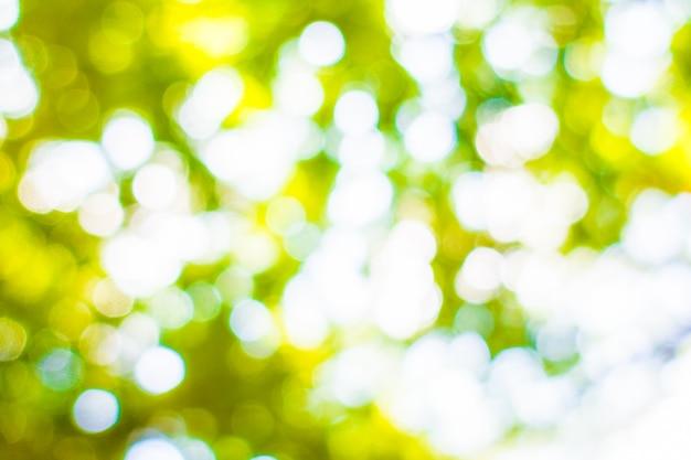 Abstract groen bokehlicht Gratis Foto