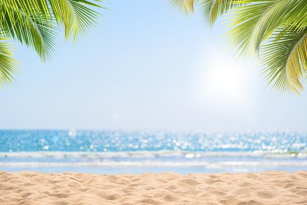 Abstract zeegezicht met palmboom, tropische strandachtergrond. Premium Foto