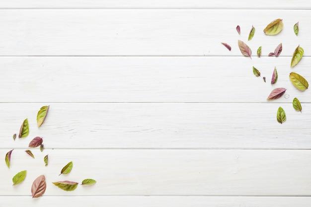 Abstracte kleine bladeren op tafel Gratis Foto