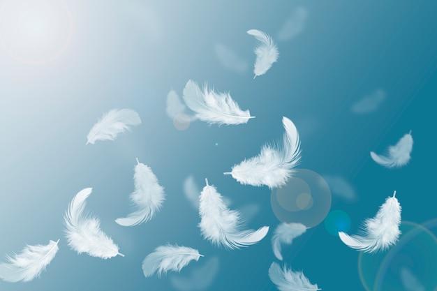 Abstracte solf witte veren zwevend in de lucht Premium Foto