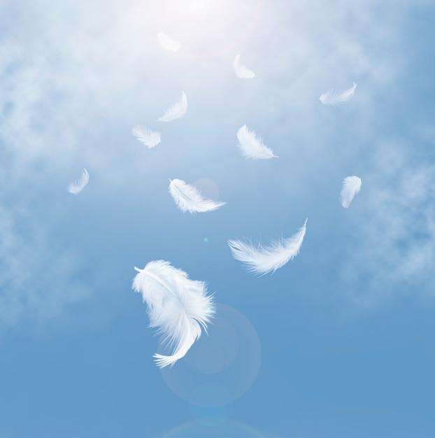 Abstracte witte veren die in de hemel vallen. Premium Foto