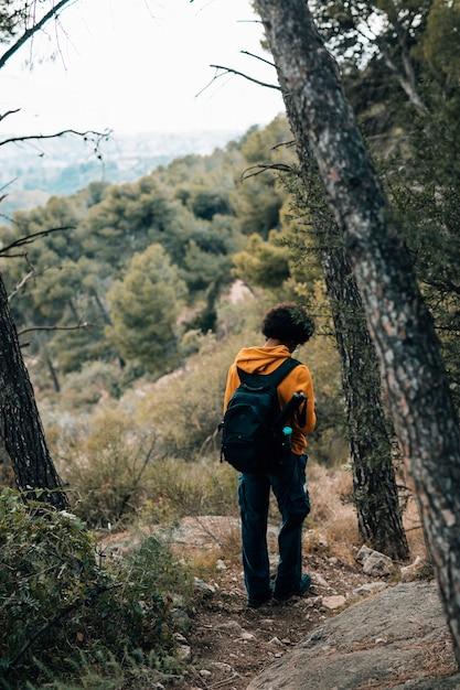 Achteraanzicht van een mannelijke wandelaar wandelen in het bos Gratis Foto