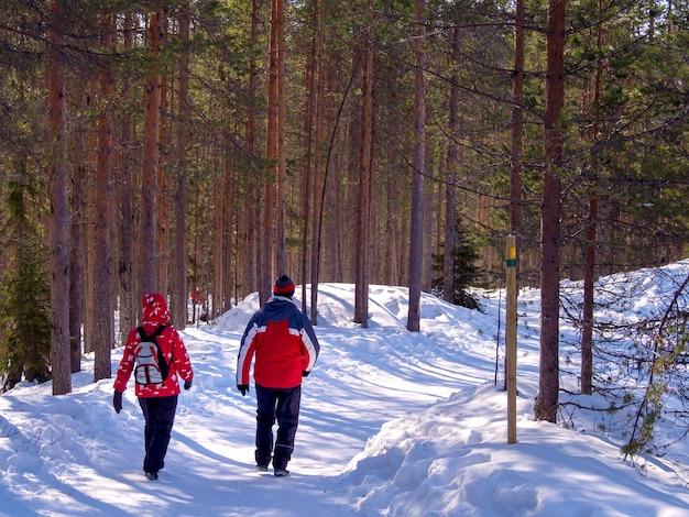 Achteraanzicht van twee toeristen lopen in besneeuwde bossen Premium Foto