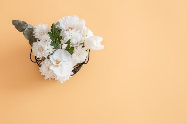 Achtergrond is een effen kleur met levendige witte bloem. Gratis Foto