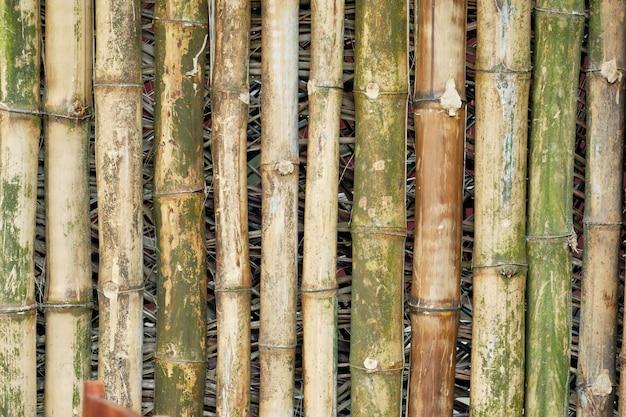 Achtergrond van de bamboe de houten schors verouderde oosterse textuur. houten tak achtergrond Premium Foto