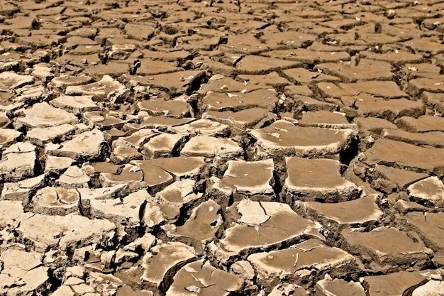 Achtergrond van gedroogde en gebarsten modderige grond Gratis Foto