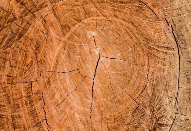 Achtergrond van hout snijden Premium Foto