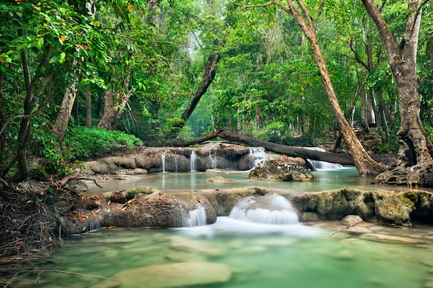 Achtergrond van stromende waterval in nationaal park in diepe boswildernis op berg. Premium Foto