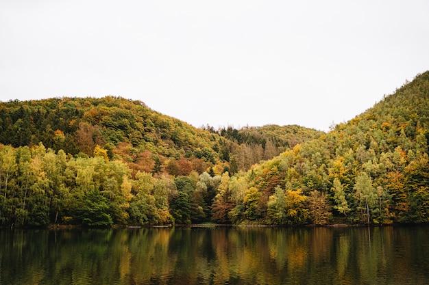 Adembenemend schot van een meer naast een bergachtig bos in de herfst met de hemel op de achtergrond Gratis Foto
