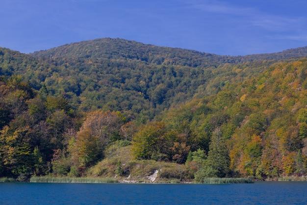 Adembenemend schot van het bos in de heuvels dichtbij het plitvice-meer in kroatië Gratis Foto