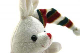 Adorable generieke knuffelkonijntje, geboorte Gratis Foto