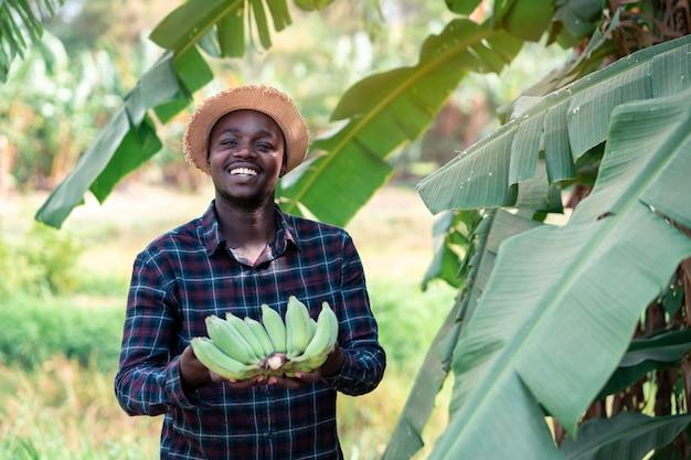 Afrikaanse boer met banaan op biologische boerderij Premium Foto