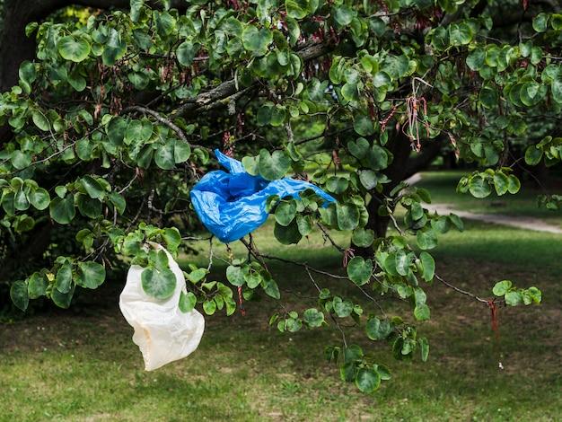Afval plastic zak die op boomtak bij park overhandigen Gratis Foto
