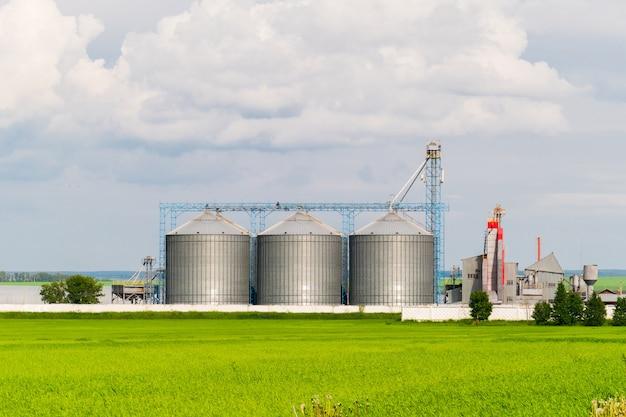 Agricultural silo, voorgrond zonnebloemplantages - building exterior, opslag en drogen van granen, tarwe, maïs, soja, zonnebloem tegen de blauwe lucht met witte wolken Premium Foto