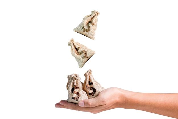 Amerikaanse dollar zakken Premium Foto