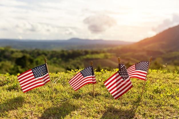 Amerikaanse vlaggen in het gras Gratis Foto