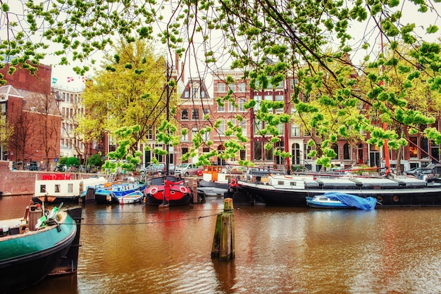 Amsterdamse grachten en typische huizen. Premium Foto