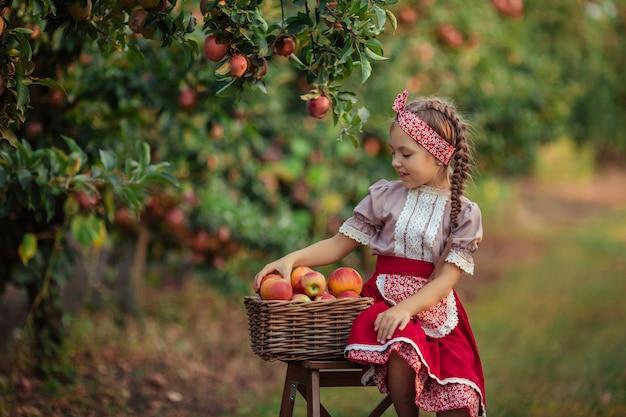 Appels oogsten op het platteland in de tuin. mooi meisje in vintage kleding een rode rok en een solokha zit in de buurt van rieten manden met appels Premium Foto
