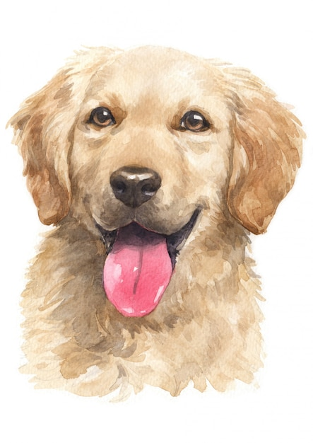 Aquarel, golden retriever Premium Foto