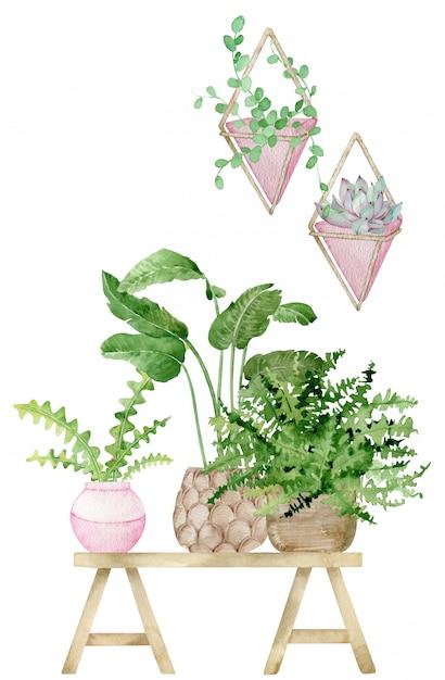 Aquarel illustratie van huisdecoratie met potplanten Premium Foto