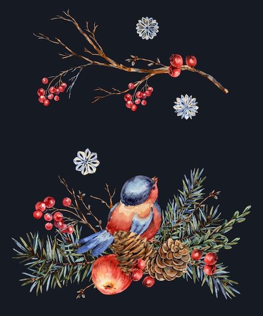 Aquarel kerst natuurlijke wenskaart van dennentakken, rode appel, bessen, dennenappels, winter vogel. vintage illustratie Premium Foto